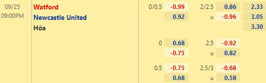 Tỷ lệ kèo giữa Watford vs Newcastle